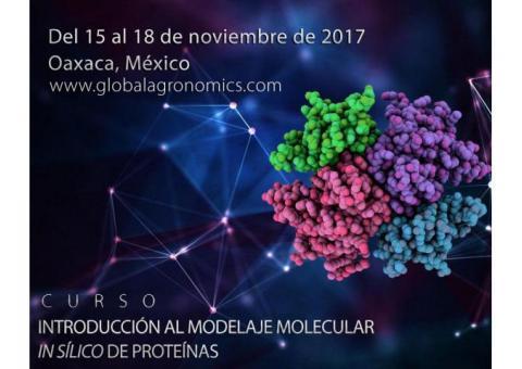 Curso Introducción al Modelaje Molecular In Silico de Proteinas