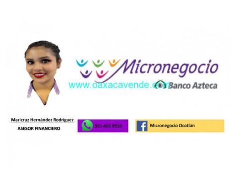 Micronegocios